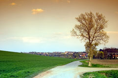Trail in the town. Of Altenburg in spring Royalty Free Stock Photography