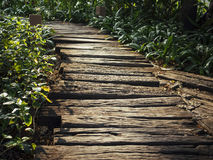 Trail Track Wooden path way royalty free stock photo