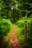 Trail and trail marker post in Shenandoah National Park Royalty Free Stock Photos