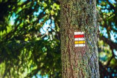 Trail Tree Sign Stock Images