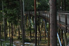 The trail trees Lipno Lookout. With pine trees around in Czech Republic Stock Photo