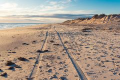 A trail of two wheels of a car drove along the wide beach. Of Adelaide city stock images
