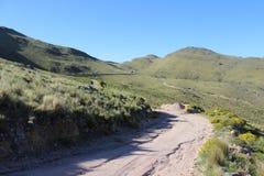 trail USA för fjädrar för berg för colorado fallmanitou Arkivbild
