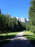 trail USA för fjädrar för berg för colorado fallmanitou Royaltyfri Fotografi