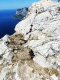 trail USA för fjädrar för berg för colorado fallmanitou Fotografering för Bildbyråer