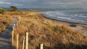 A trail on Waihi Beach stock video