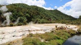 Trail in Waimangu  Valley. Waimangu volcanic valley -  New Zealand stock video footage