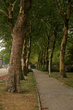 Trail for walking in a shady park. In Eindhoven, Holland Stock Image