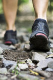 Trail walking and sport shoes Stock Photography