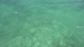 Trail on water surface behind of fast moving motor catamaran in the Caribbean Sea Cancun Mexico. Summer sunny day.  stock footage