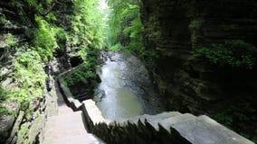 Trail in Watkins Glen gorge stock video