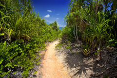 Trail way through Curieuse Island stock images