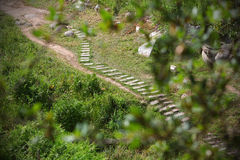 Trail with wooden steps across the meadow Royalty Free Stock Photos