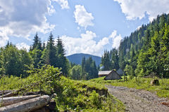 The trail in the woods. The trail in the forest on the background of mountains and clouds Royalty Free Stock Photo