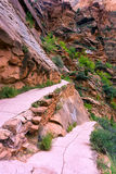 Trail in Zion National Park Royalty Free Stock Photo
