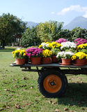 Trailer with Flower Pots Royalty Free Stock Image