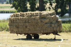 Trailer full of straw bales in the field Royalty Free Stock Photo