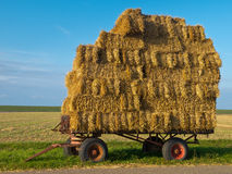 Trailer with Hay Stock Photos