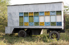 Trailer hive Stock Images