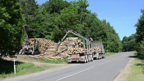 Trailer load logs stock footage