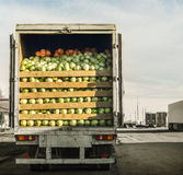 Trailer. Old trailer laden with cabbage royalty free stock images