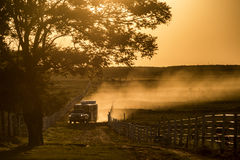Trailer on the road. Horse trailer on dirty road at sunset Stock Images