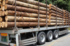 Trailer and stack of logs Royalty Free Stock Images
