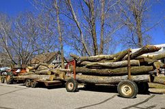 Trailers loaded with tree trunks Stock Image