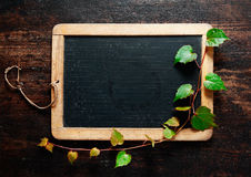 Trailing leaves on a blackboard Stock Image