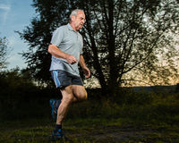 Trailrunning of a senior Royalty Free Stock Images