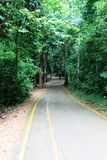 Trails. Photo of trail taken in Erawan National park in Thailand Royalty Free Stock Image