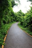Trails. Photo of trail taken in Erawan National park in Thailand Royalty Free Stock Photo