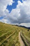 trails Arkivbild