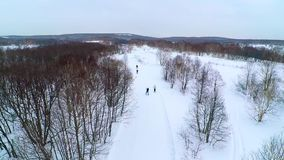 Trails on a cloudy day. Skiers on a cloudy day aerial stock video