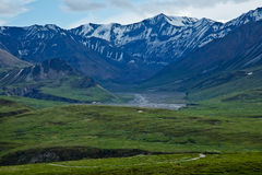 Trails in Denali National Park Stock Photo