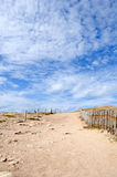 Trails in the dunes on Quiberon coast, Brittany Royalty Free Stock Photo