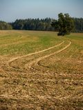 Trails in  a field Royalty Free Stock Images