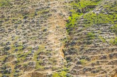 Trails from grazing animals. In the hills Royalty Free Stock Images