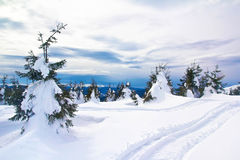 Trails on the peak. Of a mountain Royalty Free Stock Photo