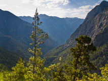 Trails thru Samaria gorge Stock Photos