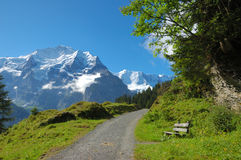 Trailside Bench. Bench beside a hiking trail with the snowcapped peaks of the Swiss Alps in the background Royalty Free Stock Photos