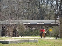 A Late Winter`s Ride Into Beautiful White Rock Lake Park. Trailways and roadways in this area lend themselves to equestrians who ride the park on a regular basis royalty free stock photos