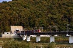 Train à grande vitesse Lastochka sur le chemin de fer de montagne Images stock