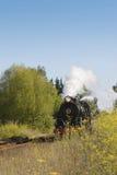 Train 03 de vapeur Photographie stock libre de droits