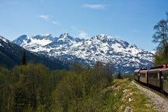 Train through Alaska Royalty Free Stock Photography
