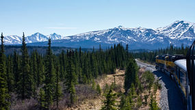 Train through Alaska Royalty Free Stock Photos