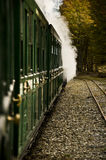 Train in the Autumn. royalty free stock images
