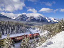 Train in Banff National Park Royalty Free Stock Photography