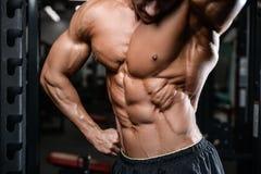 Train beau de modèle de forme physique dans le muscle de gain de gymnase Images libres de droits
