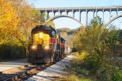 Train below bridge royalty free stock photo